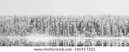 Northern winter landscape. Panorama of the forest with reflection in the river - stock photo