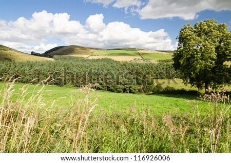 Northumberland hills / The rolling hills of Northumberland National Park with distant hill farm - stock photo