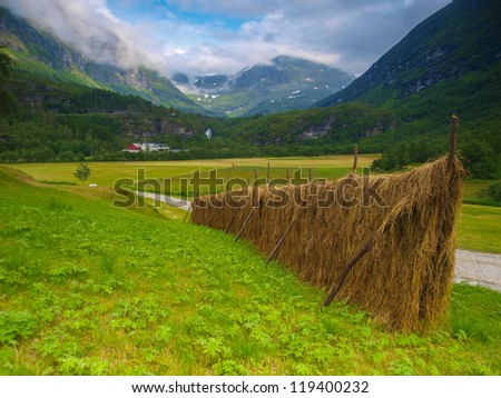 Norway landscape. Hay on farm. - stock photo