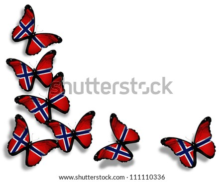 Norwegian flag butterflies, isolated on white background - stock photo