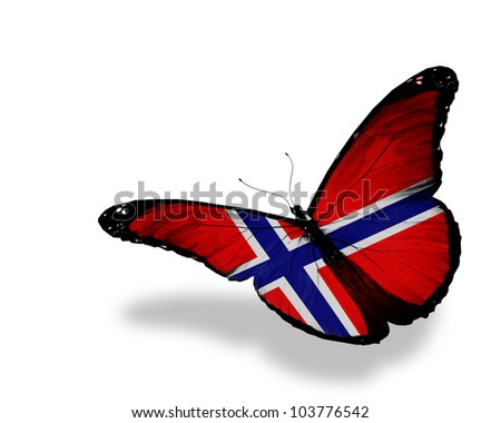 Norwegian flag butterfly flying, isolated on white background - stock photo