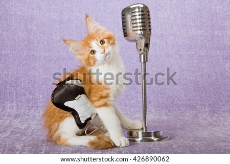 Norwegian Forest Cat kitten wearing toy black and white guitar with imitation fake vintage microphone on stand on lilac light purple background  - stock photo