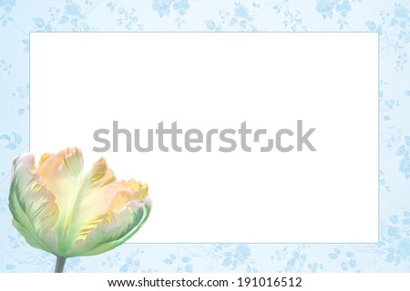 nostalgic floral frame with beautiful tulip flower, light blue and yellow - stock photo