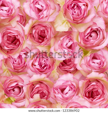Nostalgic roses endless pattern - stock photo