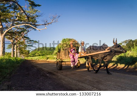 NOSY BE, MADAGASCAR, APR 8: Unidentified malagasy couple and zebu cart carrying ylang ylang in Nosy Be, Northern Madagascar on April 8, 2008 - stock photo