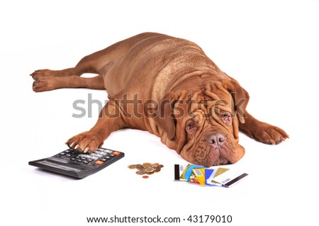 Not Enough Money To Pay Out Credit Card Debt - stock photo