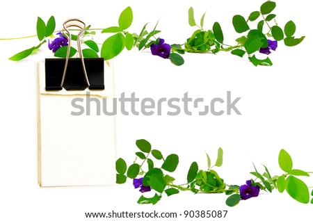 Note paper hanging on the vine of Clitoria ternatea. - stock photo