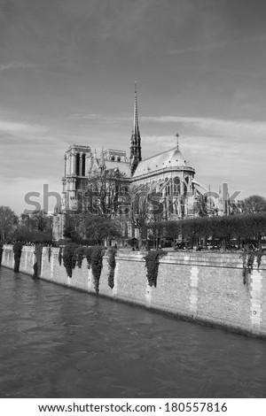 Notre dame de Paris Cathedral overlooking Seine river, Paris, France. - stock photo