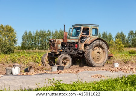 NOVGOROD, RUSSIA - AUGUST 26, 2015: Old wheeled tractor working at the potato field in summer sunny day - stock photo