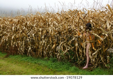 Nude women in corn field antimated rather good