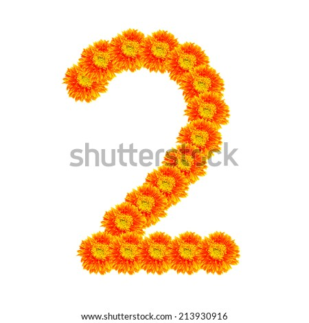 Number 2 by calendula flower isolated on white