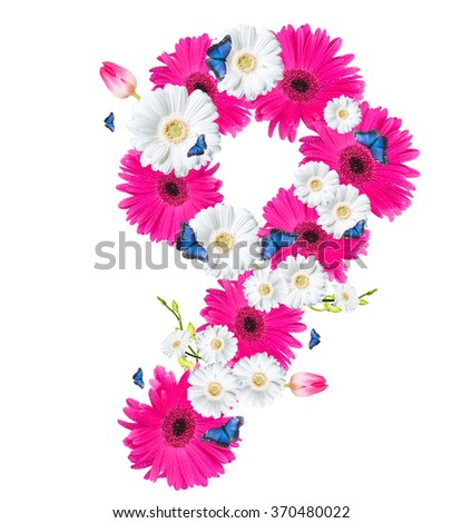 Number 9, flower isolated on white background. Gerber, tulips and butterfly  - stock photo