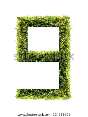 Number 9 green leaves on white background - stock photo
