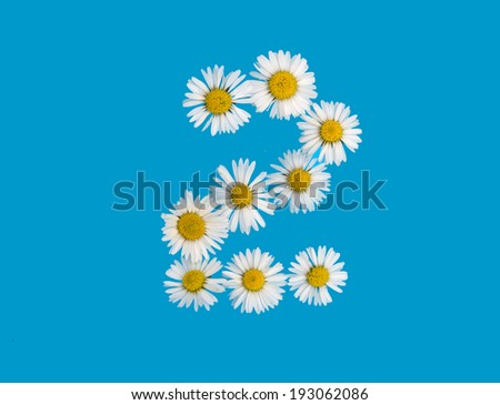 number 2 in daisies  - stock photo