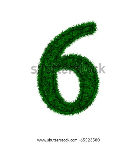 Number of green grass isolated on white background - stock photo