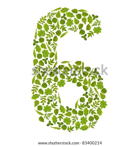 Number SIX from green leafs - stock photo
