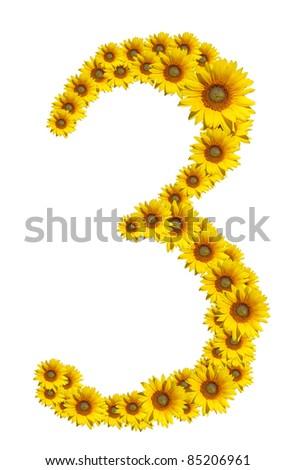 Number 3, Sunflower isolate on White background - stock photo