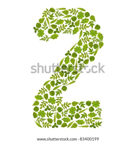 Number TWO from green leafs - stock photo