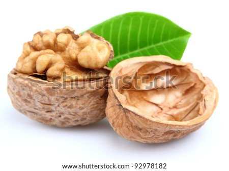 Nut with leaf. Use it for a health and nutrition concept.