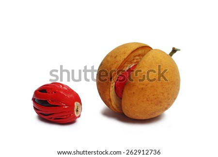 Nutmeg is the only spice delivering two distinct flavors. Grows in tropical regions. Genus is Myristica. - stock photo