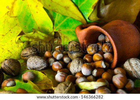 Nuts and hazelnuts spilled from ceramic pot on background autumn leaves/autumn details - stock photo