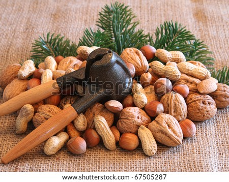 Nuts and nutcracker - stock photo