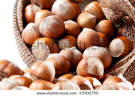 Nuts. Group of filberts in the pouch (sac, saccule) - stock photo