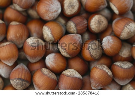 Nuts, hazelnuts as background. Background of disorderly numerous ripe brown hazelnuts. - stock photo
