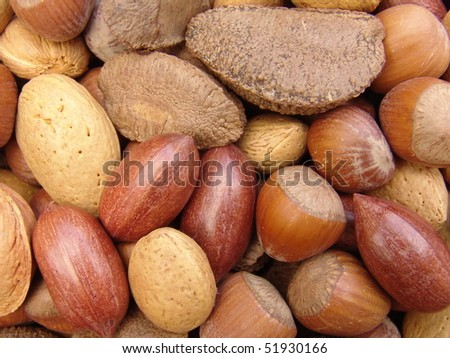 Nuts in shells - stock photo