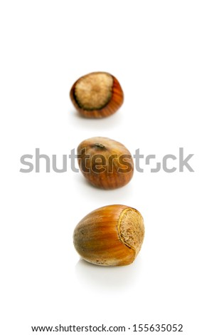Nuts isolated on white background. Three in row