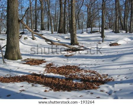 NY in the snow. - stock photo