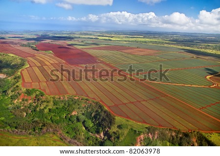 Oahu, Hawaii pineapple fields aerial - showing rich, red volcanic soil. - stock photo