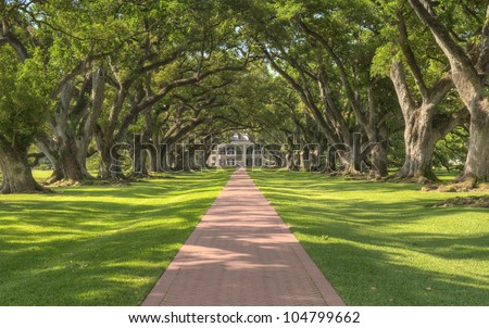 Oak Alley Plantation - Tree Tunnel Leading Up To The Mansion - stock photo