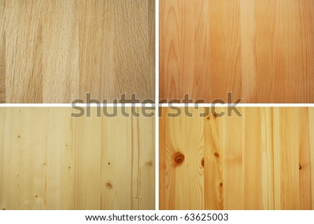 oak beech spruce and pine wood samples - stock photo