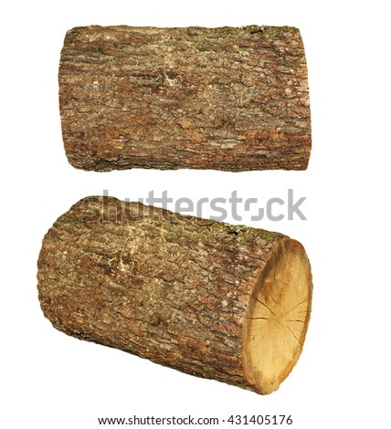 oak stump, log fire wood isolated on white background with clipping path - stock photo