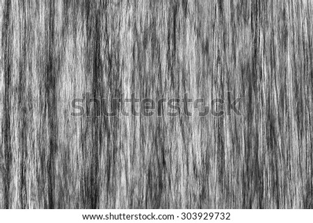 Oak Wood Veneer Bleached Dark Gray Grunge Texture Sample.