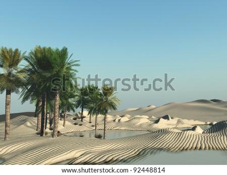 oasis - stock photo