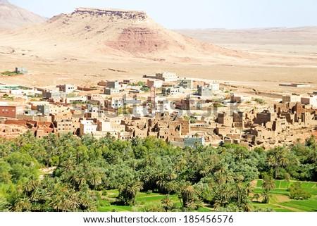 Oasis in the desert in Morocco - stock photo