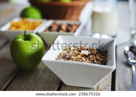 Oat cereal with fresh milk and green apples on a wooden table - stock photo