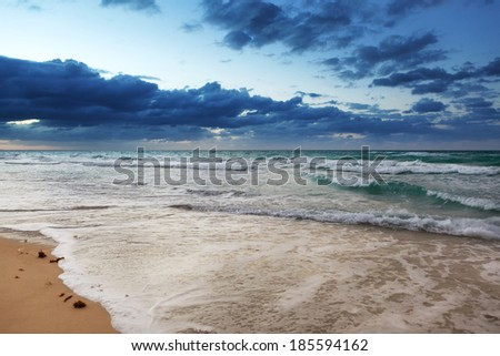 ocean and sandy beach on a sunny day