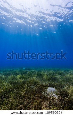 Ocean background - Sun rays cut down through dark blue water creating a dancing dappled light effect on a shallow seagrass seabed in the Egyptian Red Sea town of Nuweiba - stock photo