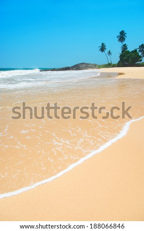 Ocean beach with waves against rock and palm trees in sunny day - stock photo