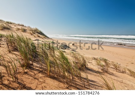 ocean shoreline with grassed sand dune surf and summer sky - stock photo
