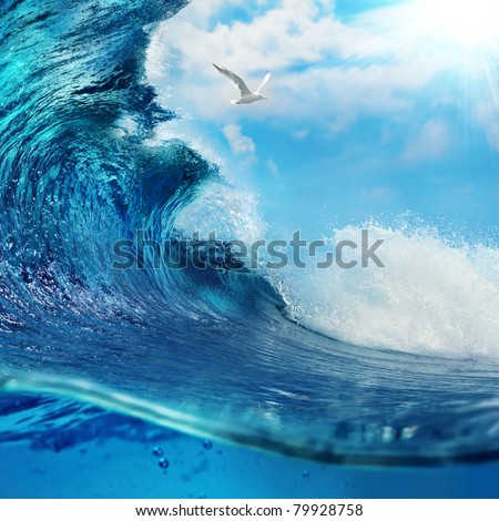ocean-view seascape breaking surfing ocean wave with cloudy sky seagull and the sun