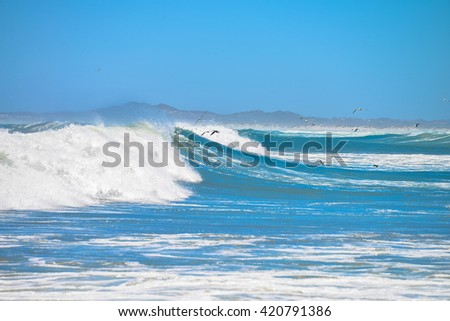 Ocean waves on a sunny day
