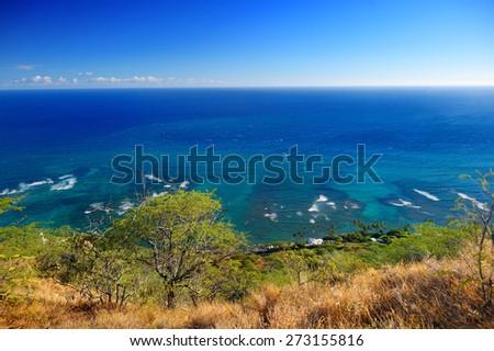 Oceanfront houses in Oahu island, Hawaii - stock photo