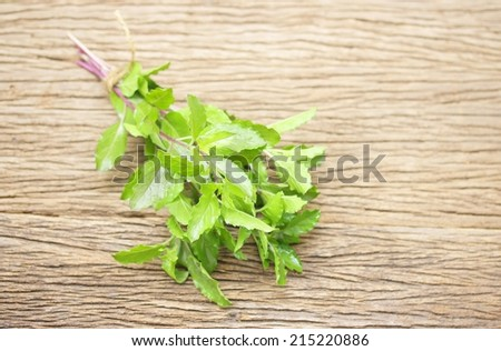 Ocimum on wooden table