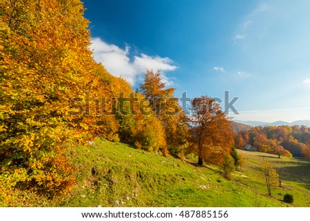 October autumn scenery in remote mountain area in Transylvania