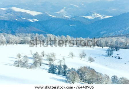 October mountain beech forest edge with first winter snow and last autumn colourful foliage on far mountainside