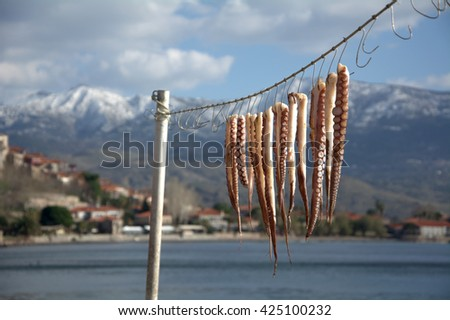 Octopus drying at the sun outside tavern in Lesvos island, Greece - stock photo
